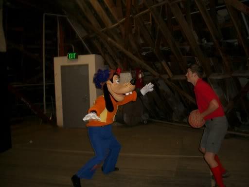 The Matterhorn Basketball Court Micechat